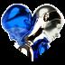 Zedd365_2019_v2.png